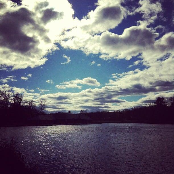 More Post-Sandy...