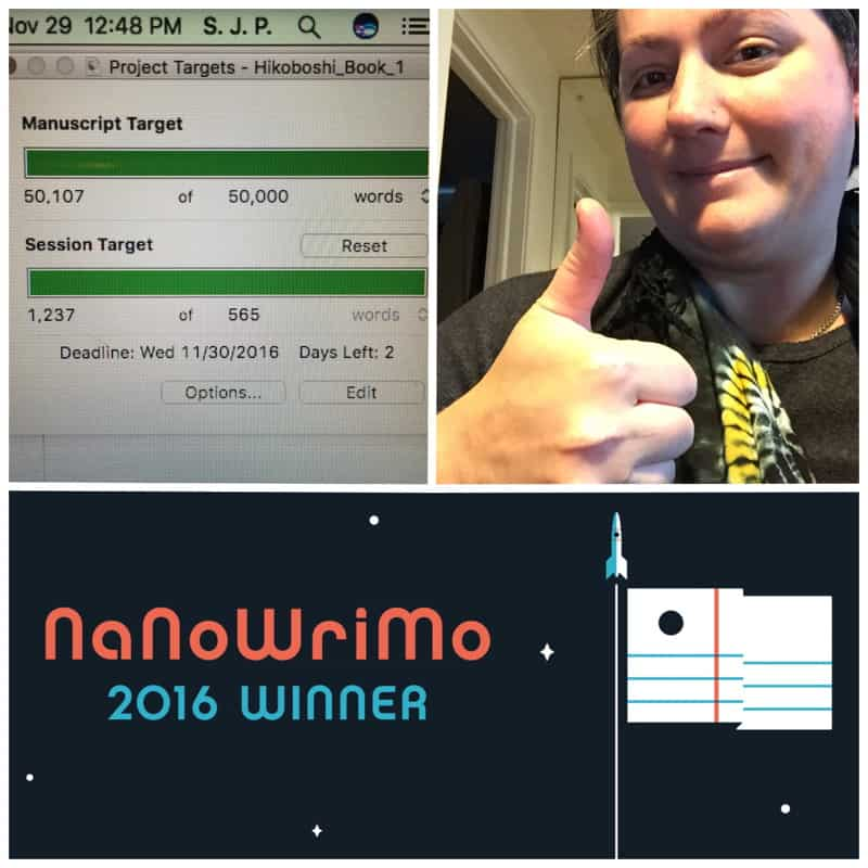 I finished NaNoWriMo! And here's how I did and what's next.