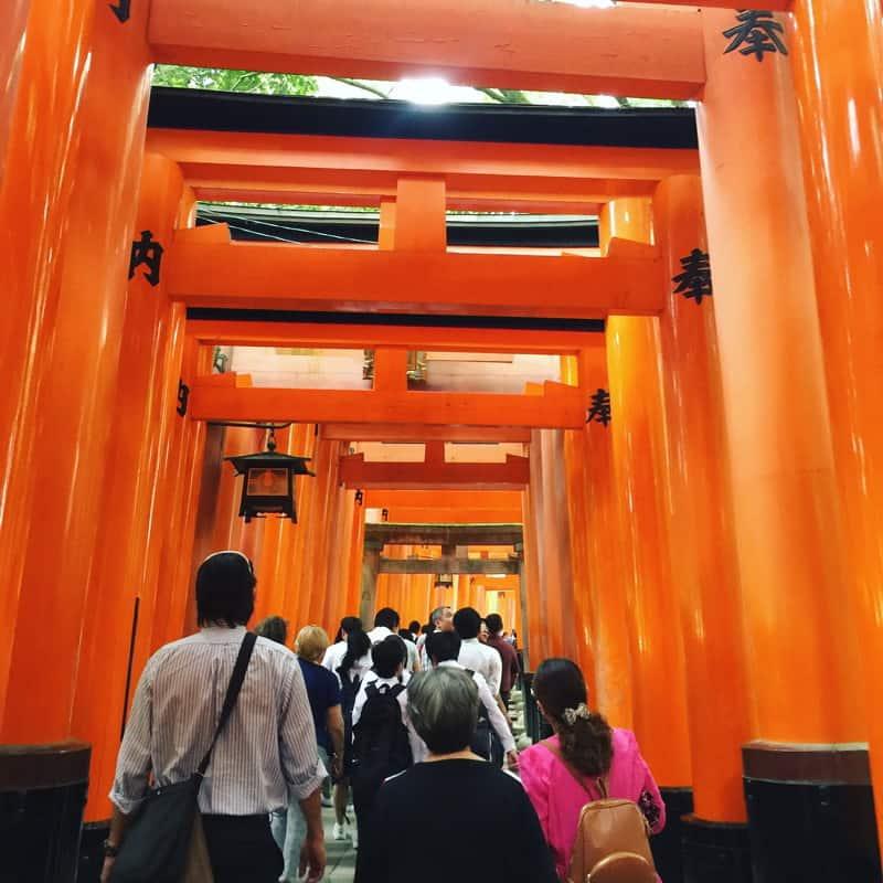 Walk up the Inari mountain through Inari Fushimi shrine and pray for worldly prosperity.