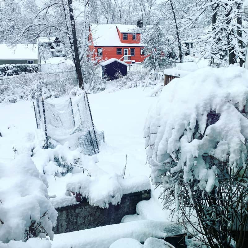 All the things that happened in the week ending March 10, 2019 including more snow, more pottery, and, man, I have been working A LOT.