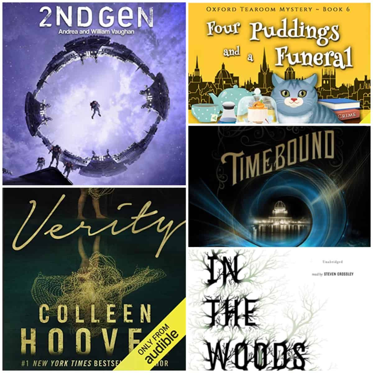 In this Book Chat, some great mysteries and sci-fi, too, of course, from Tana French, H. Y. Hanna, Andrea Vaughan and William Vaughan, Colleen Hoover, and Rysa Walker.